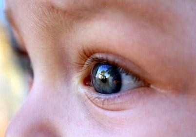 Mbështetje vizuele tek fëmijët me çrregullime të spektrit të autizmit